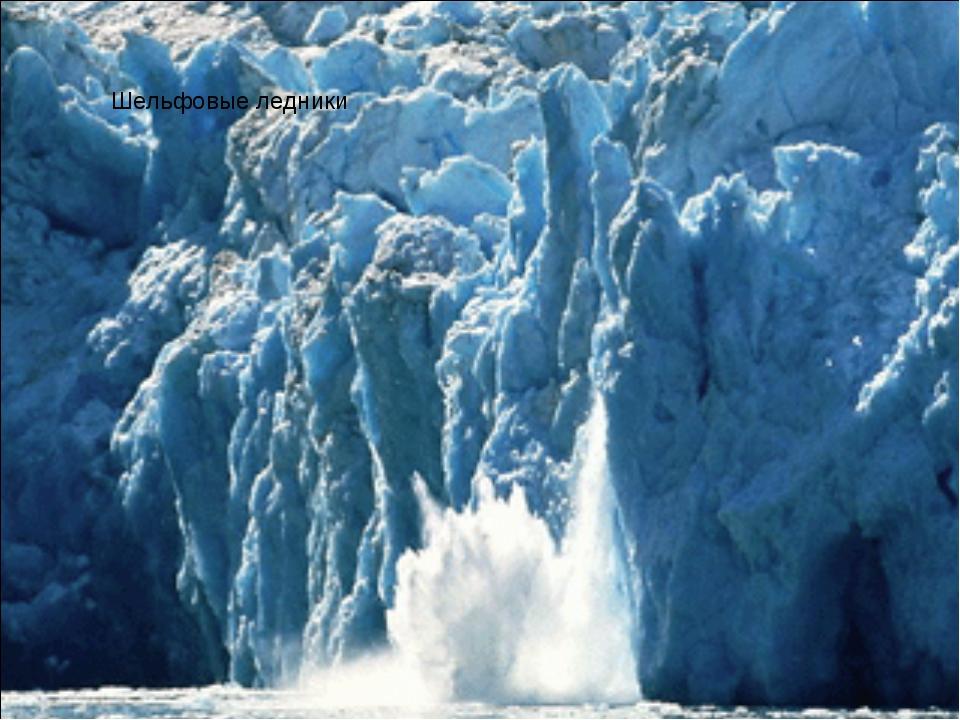 Шельфовые ледники