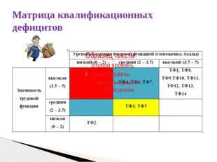 Матрица квалификационных дефицитов
