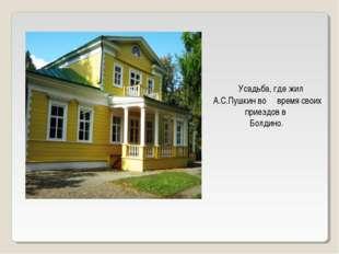 Усадьба, где жил А.С.Пушкин во время своих приездов в Болдино.