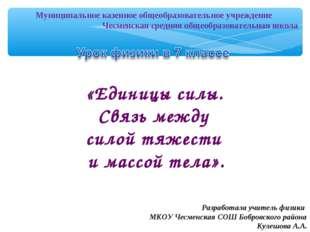Муниципальное казенное общеобразовательное учреждение Чесменская средняя о