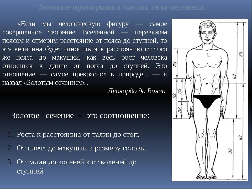 версия при возраст разных частей тела БЕЗОПАСНОСТИ