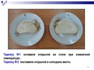 * Тарелку №1 оставили открытой на столе при комнатной температуре. Тарелку №2