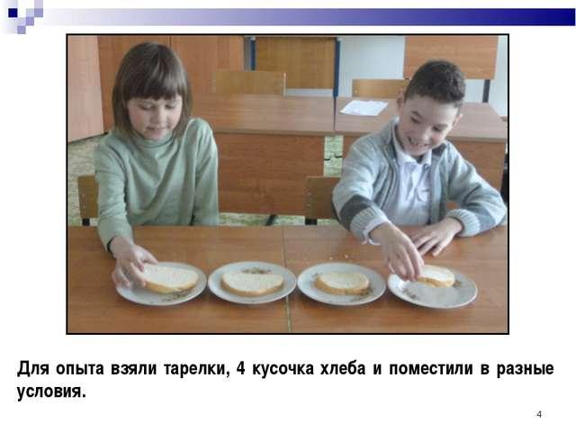 * Для опыта взяли тарелки, 4 кусочка хлеба и поместили в разные условия.