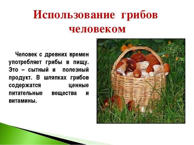 Использование грибов человеком Человек с древних времен употребляет грибы в п...
