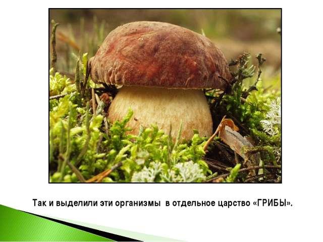 Так и выделили эти организмы в отдельное царство «ГРИБЫ».