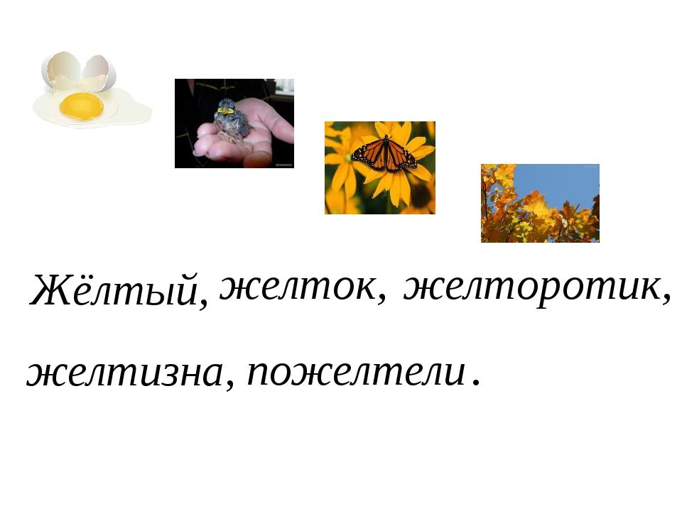 Жёлтый, желток, желторотик, желтизна, пожелтели .