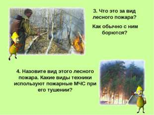 3. Что это за вид лесного пожара? Как обычно с ним борются? 4. Назовите вид э