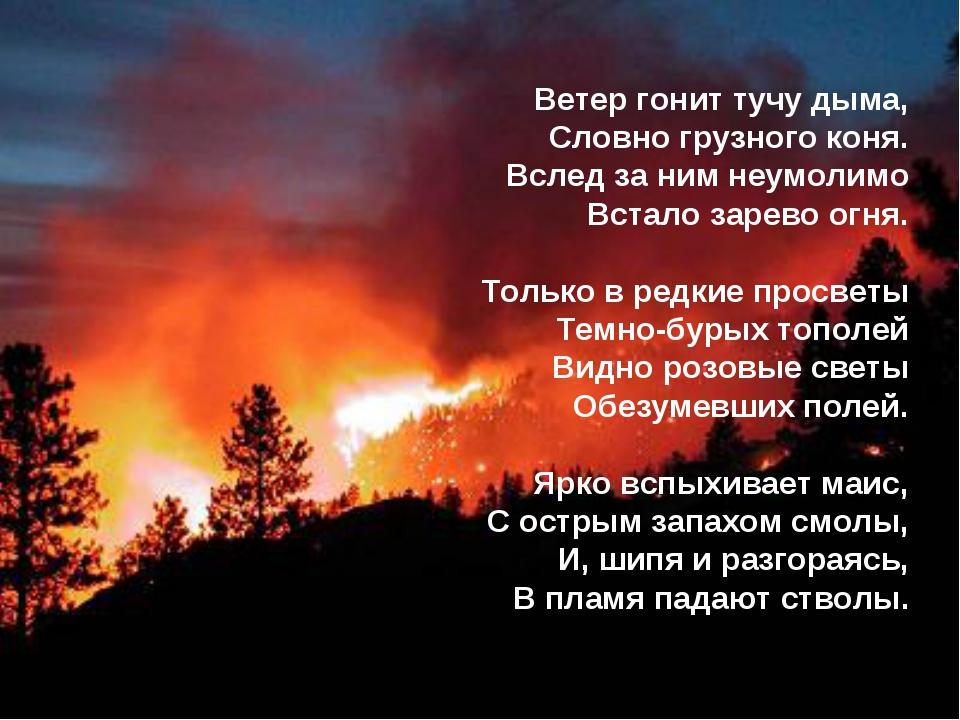 Ветер гонит тучу дыма, Словно грузного коня. Вслед за ним неумолимо Встало за...
