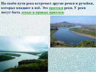 На своём пути река встречает другие речки и ручейки, которые впадают в неё. Э