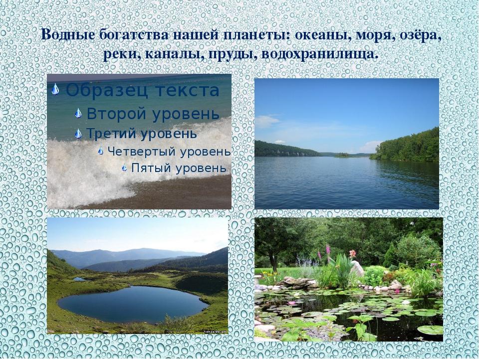 Водные богатства нашей планеты: океаны, моря, озёра, реки, каналы, пруды, вод...