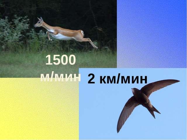 1500 м/мин 2 км/мин