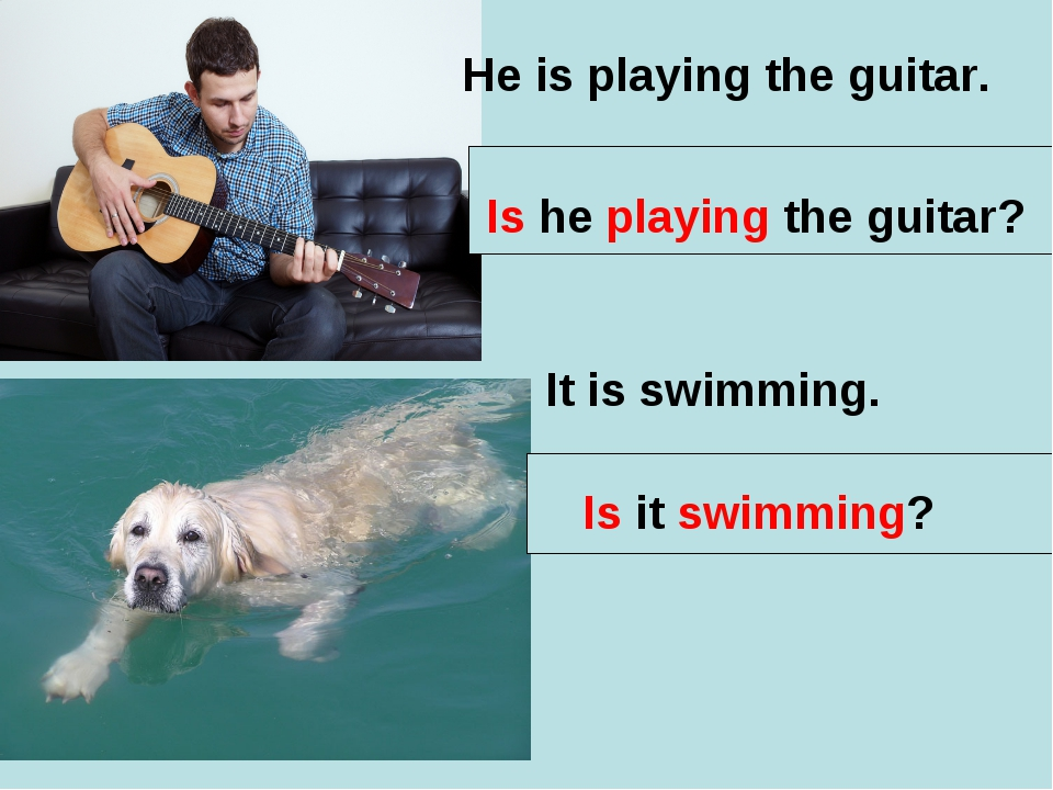 He is playing the guitar. Is he playing the guitar? It is swimming. Is it swi...