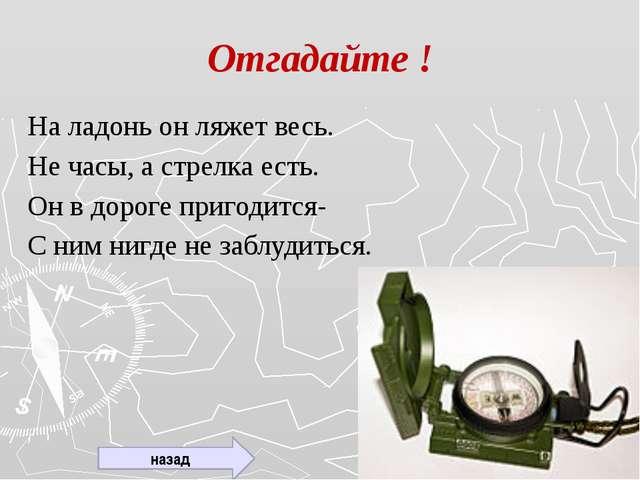 Что этот термин означает? Компас (голл. - kompass) - основной мореходный инст...