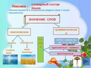 Лексика - словарный состав языка Лексика изучается в специальном разделе наук