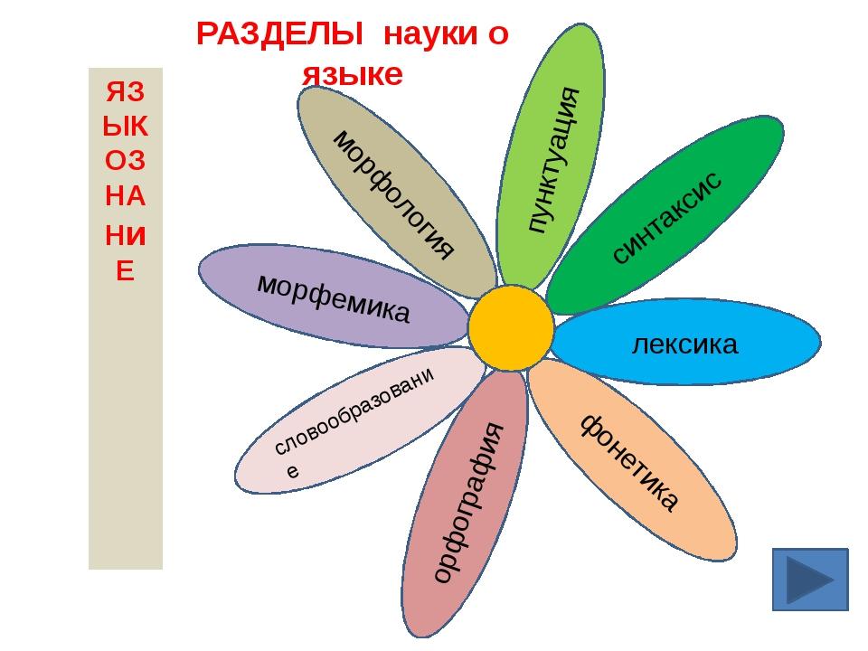 словообразование морфемика морфология орфография пунктуация синтаксис фонетик...
