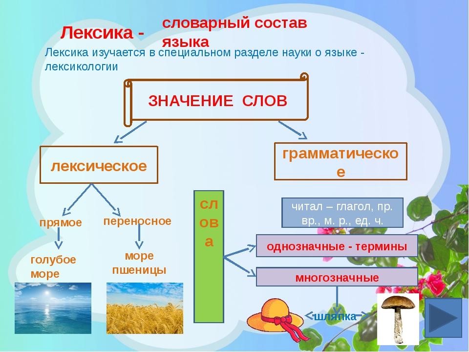 Лексика - словарный состав языка Лексика изучается в специальном разделе наук...