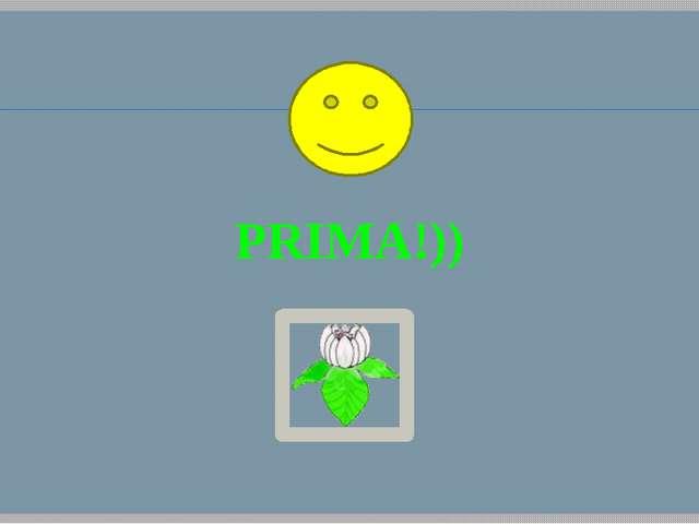 PRIMA!))