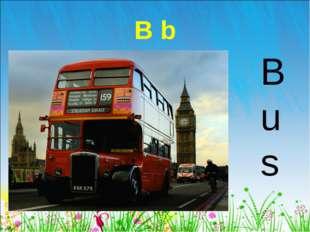 B b Bus