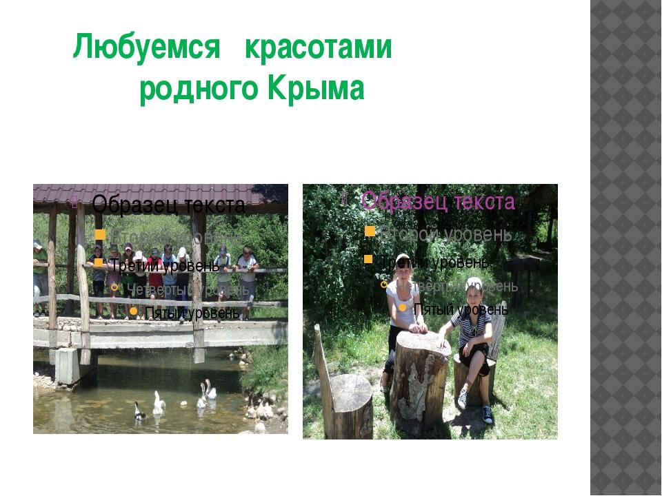 Любуемся красотами родного Крыма
