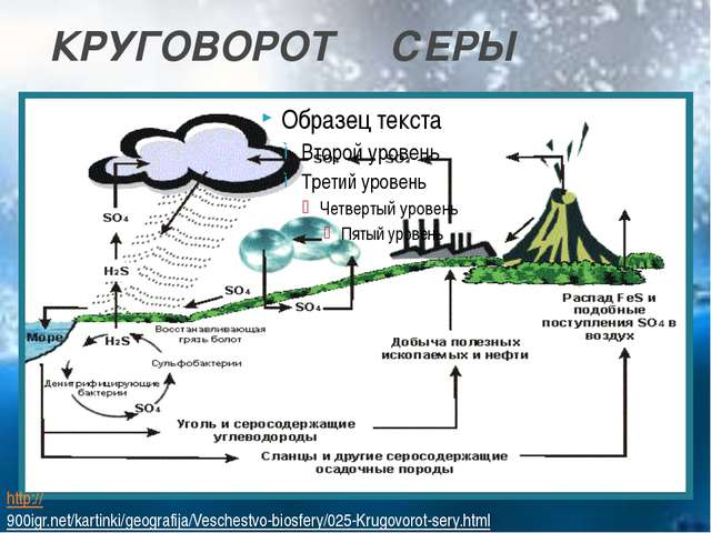 КРУГОВОРОТ СЕРЫ http://900igr.net/kartinki/geografija/Veschestvo-biosfery/025...