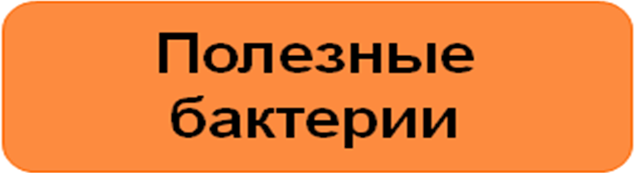 hello_html_m384496f5.png