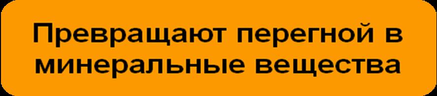 hello_html_mfdeb471.png