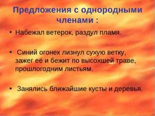 Предложения с однородными членами : Набежал ветерок, раздул пламя. Синий огон