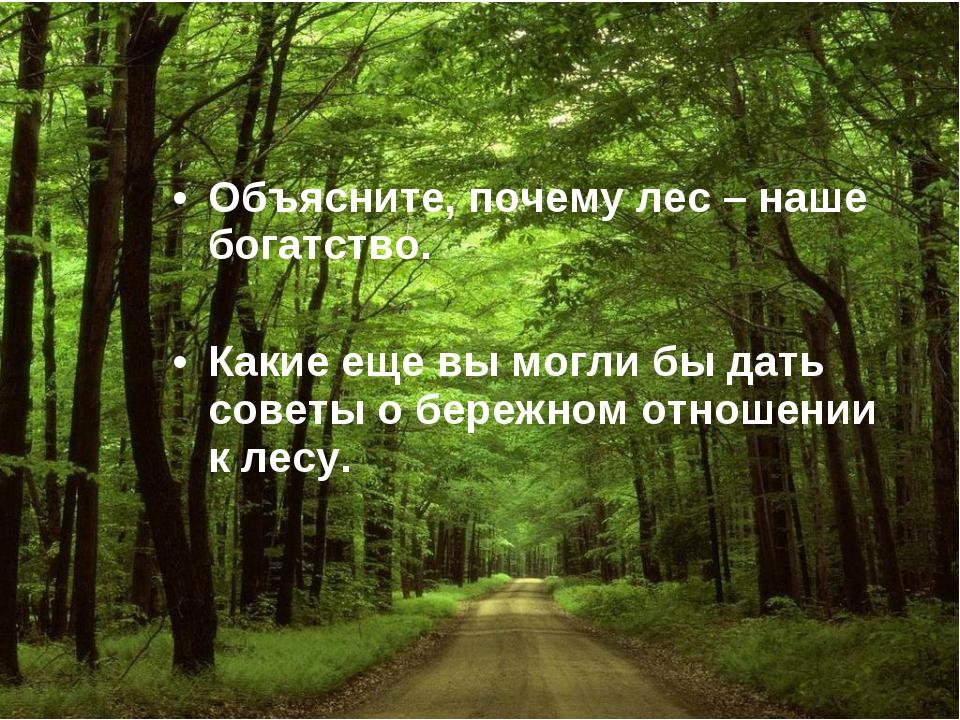 Объясните, почему лес – наше богатство. Какие еще вы могли бы дать советы о б...