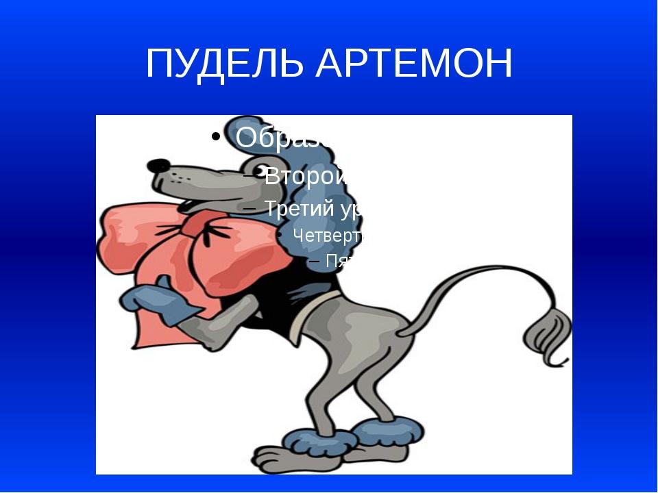 ПУДЕЛЬ АРТЕМОН