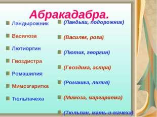 Абракадабра. Ландырожник Василоза Лютиоргин Гвоздистра Ромашилия Мимозгаритк
