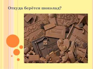 Откуда берётся шоколад?