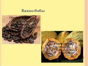 Какао-бобы Какао-бобы свежесобранных плодов не обладают вкусовыми и ароматиче