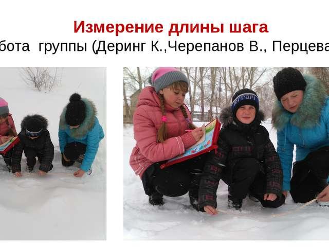 Измерение длины шага Работа группы (Деринг К.,Черепанов В., Перцева И.)