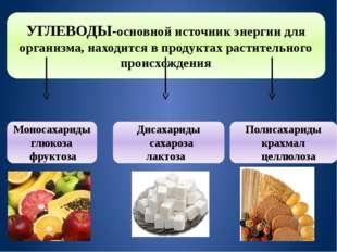 УГЛЕВОДЫ-основной источник энергии для организма, находится в продуктах расти