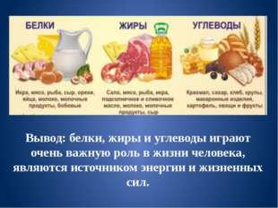 Вывод: белки, жиры и углеводы играют очень важную роль в жизни человека, явля