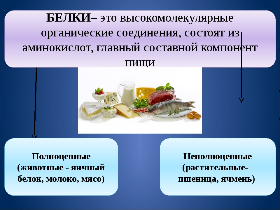 БЕЛКИ– это высокомолекулярные органические соединения, состоят из аминокислот...