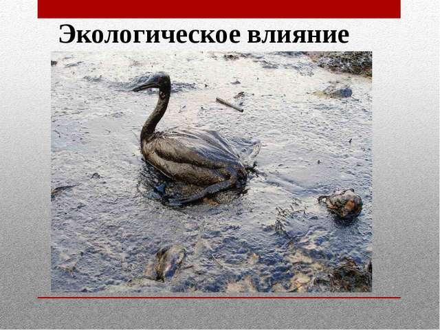 Экологическое влияние