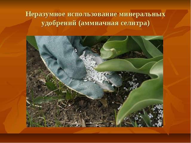 Неразумное использование минеральных удобрений (аммиачная селитра)