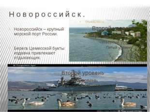 Н о в о р о с с и й с к . Новороссийск – крупный морской порт России. Берега