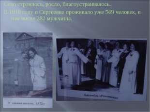 Село строилось, росло, благоустраивалось. В 1910 году в Сергеевке проживало у