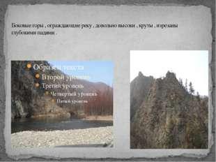 Боковые горы , ограждающие реку , довольно высоки , круты , изрезаны глубоким