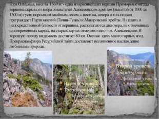 Гора Ольховая, высота 1669 м. - одна из красивейших вершин Приморья, с запада