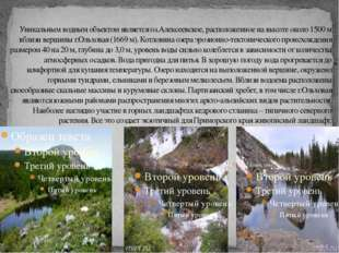 Уникальным водным объектом является оз.Алексеевское, расположенное на высоте