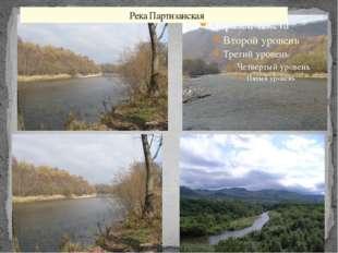 Река Партизанская