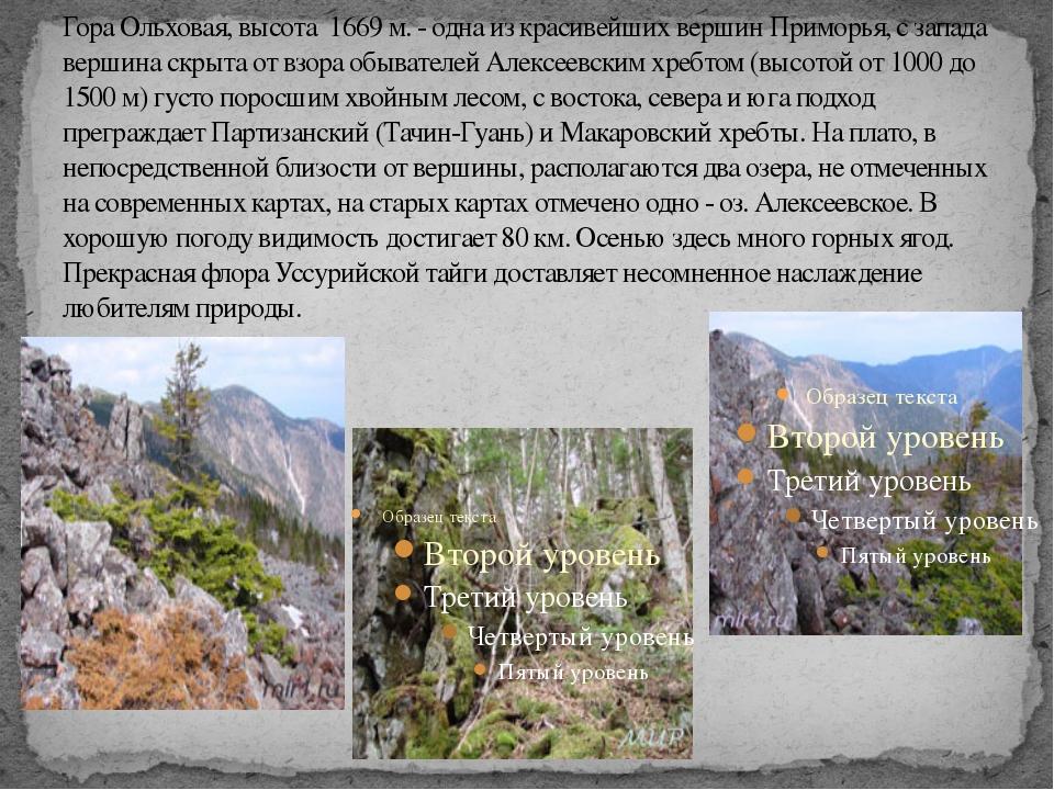 Гора Ольховая, высота 1669 м. - одна из красивейших вершин Приморья, с запада...