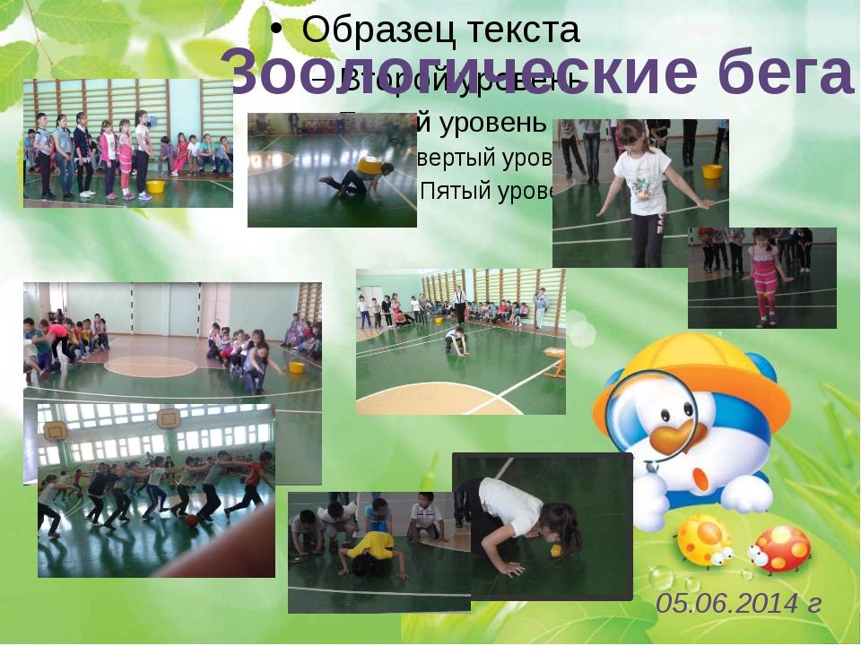 Зоологические бега 05.06.2014 г