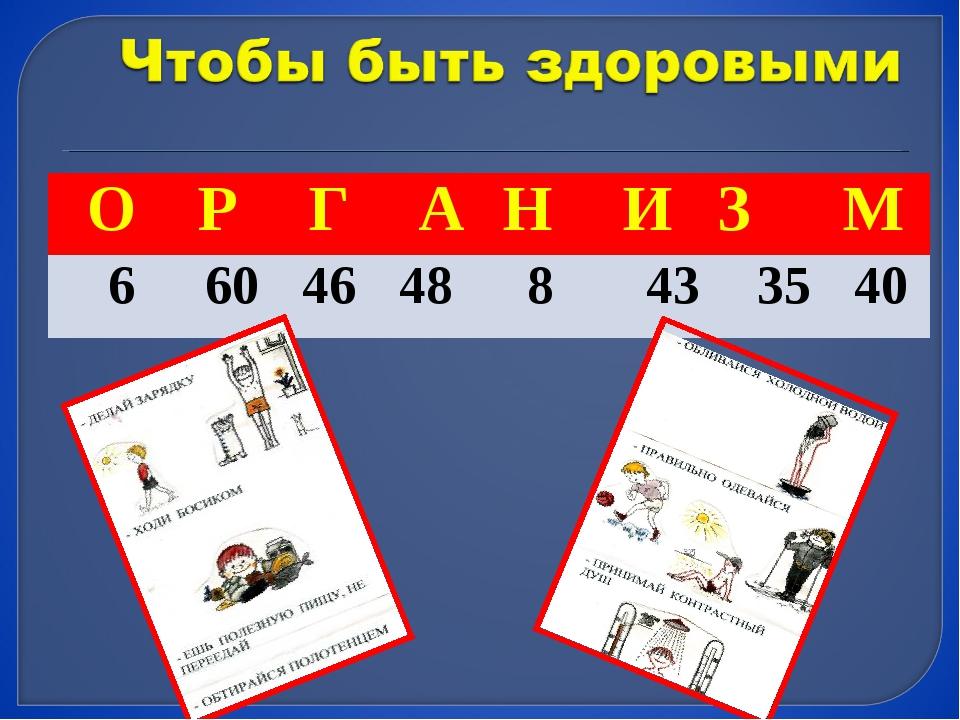 О Р Г А Н ИЗ М 6 60 46 48 8 43 35 40