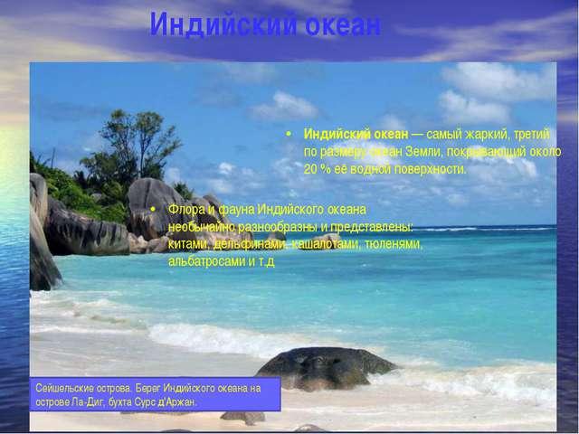 Индийский океан Индийский океан — самый жаркий, третий по размеру океан Земли...