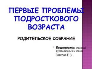 Подготовила: классный руководитель 6 Б класса Вилкова Е.В.