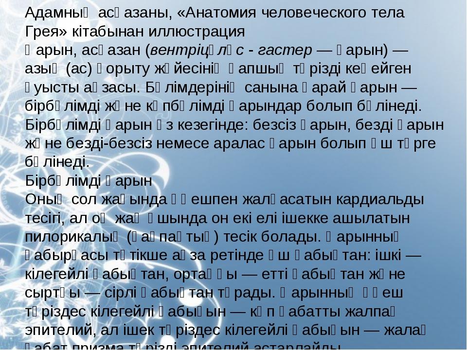 Адамның асқазаны, «Анатомия человеческого тела Грея» кітабынан иллюстрация Қа...